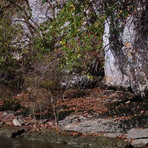 Image 193 - Jean-Pierre sergent, Water, Rocks, Trees & Flowers, April 2014, JP Sergent