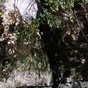 Image 192 - Jean-Pierre sergent, Water, Rocks, Trees & Flowers, April 2014, JP Sergent