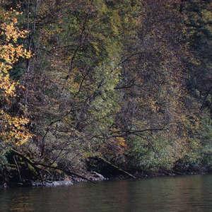 Image 197 - Jean-Pierre sergent, Water, Rocks, Trees & Flowers, April 2014, JP Sergent