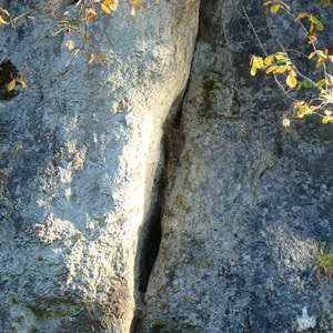 Image 205 - Jean-Pierre sergent, Water, Rocks, Trees & Flowers, April 2014, JP Sergent