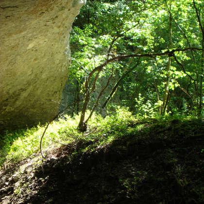 Image 13 - Z-visuels-grotte, JP Sergent