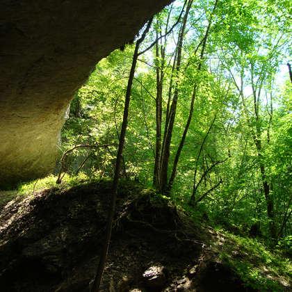 Image 14 - Z-visuels-grotte, JP Sergent