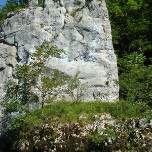 Image 243 - Jean-Pierre sergent, Water, Rocks, Trees & Flowers, April 2014, JP Sergent