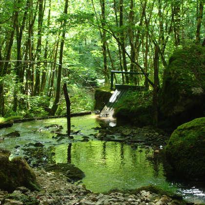 Image 15 - Z-visuels-grotte, JP Sergent