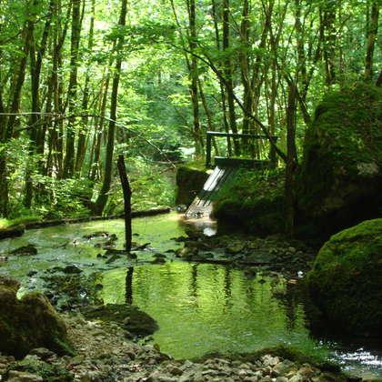 Image 12 - Z-visuels-grotte, JP Sergent