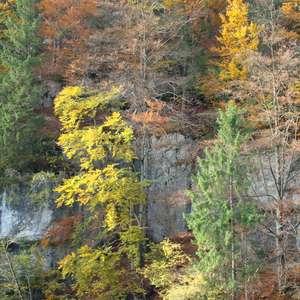 Image 211 - Jean-Pierre sergent, Water, Rocks, Trees & Flowers, April 2014, JP Sergent