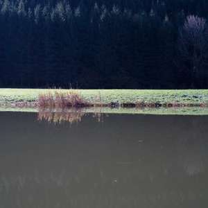 Image 112 - Jean-Pierre sergent, Water, Rocks, Trees & Flowers, April 2014, JP Sergent